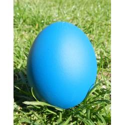 œuf à message surprise bleu canard